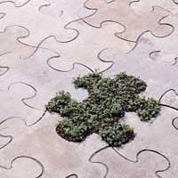 puzzle200.jpg