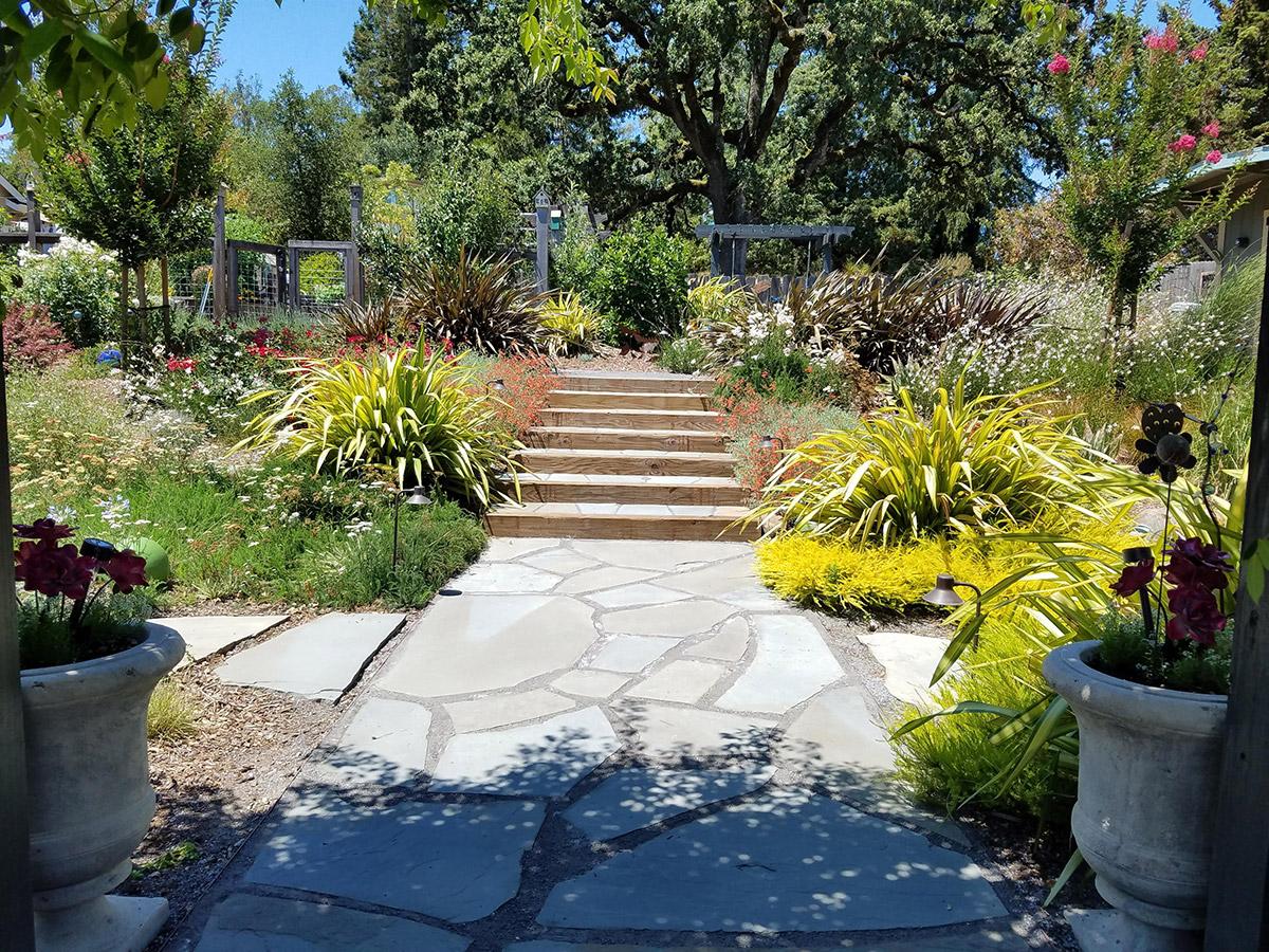 Cotati Country Style Garden O Connell Landscape