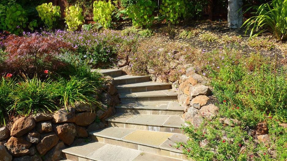 Mill Valley Natural Garden Project Portfolio u2013